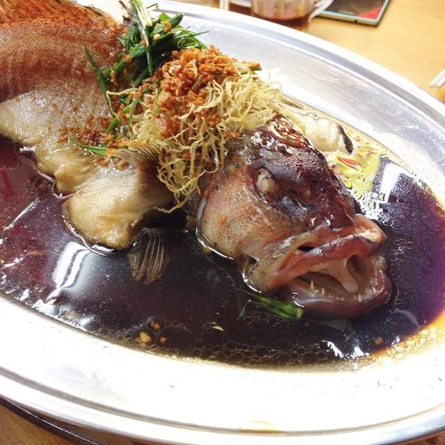 福贵有鱼 (港蒸红斑) - Bountiful Hong Kong Steamed Red Grouper from Wee's Family Coffeeshop, Blk 117 Bedok Reservoir Road #01-150 S470117.