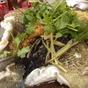 美味小食館 Restoran Meei Wei