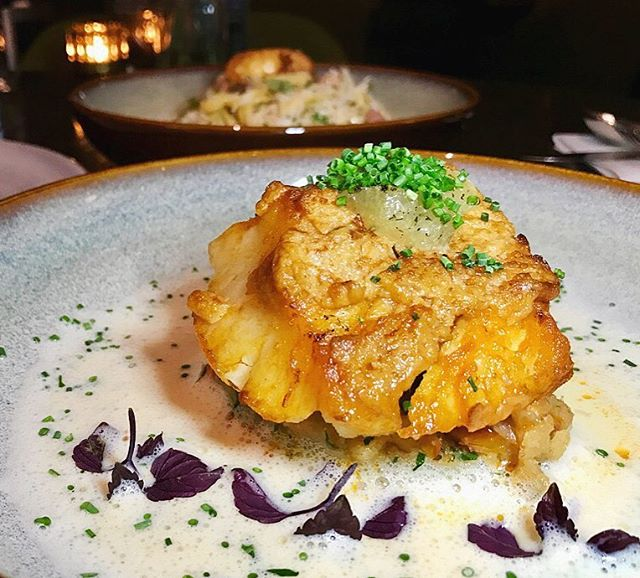 New review of @thedisgruntledbrasserie up on www.ms-skinnyfat.com Loving this Chilean White Cod with salted cod brandade, Remy Martin VSOP scampi butter, lemon confit, and Normande sauce.