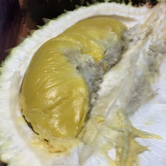 Ministry of Durian.