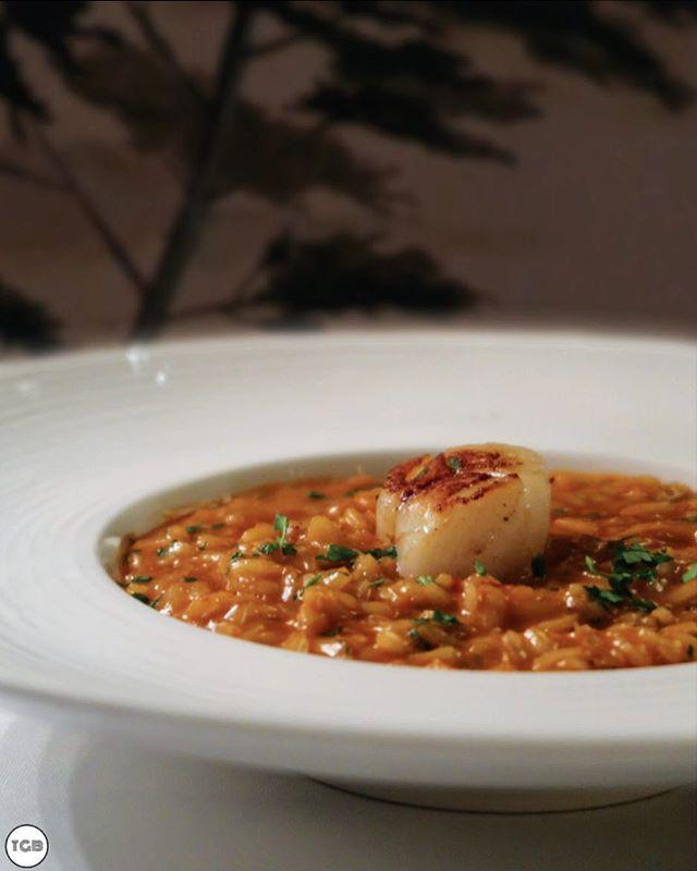 [Caffe B] Chilli Crab Risotto, short grain rice mixed with Chilli crab gravy.