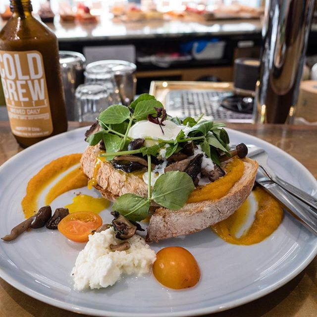 Soft-topped Toastie   mixed mushroom with sous vide egg, mozzarella cheese and baby chard on sourdough, butternut purée