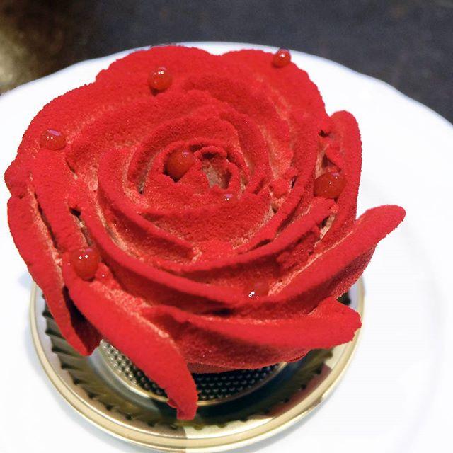 La Rose🌹[Valentine's Special]
