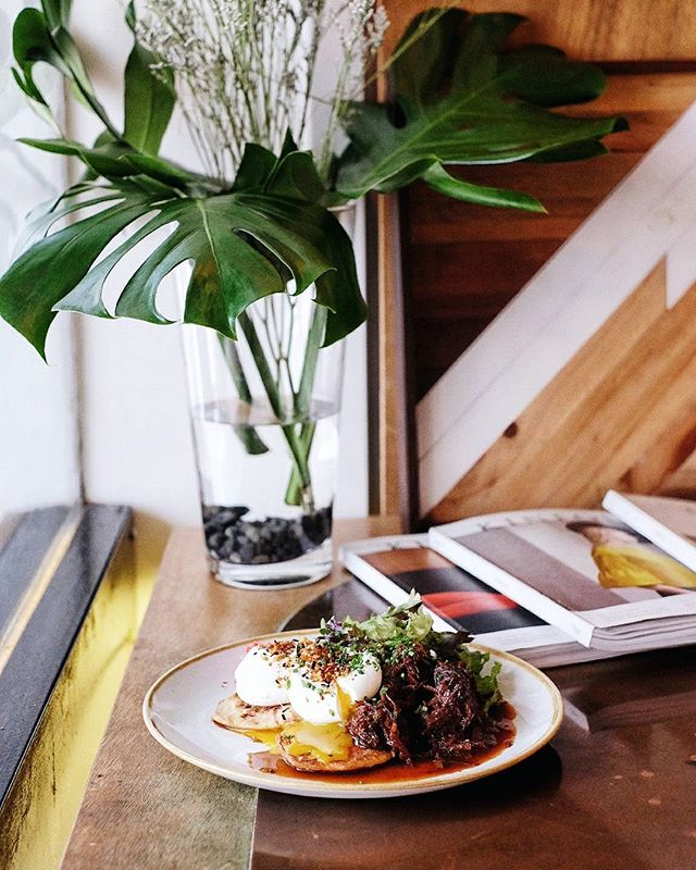 Tossing you some brunch ideas this Saturday - the * new * {Ninja Okonomiyaki} fit the bill for comfort nosh on this chilly afternoon.