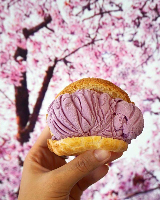 Taro Ice Cream Puff ($3.90) Great crispy puff sandwiching a fat scoop of taro ice cream.