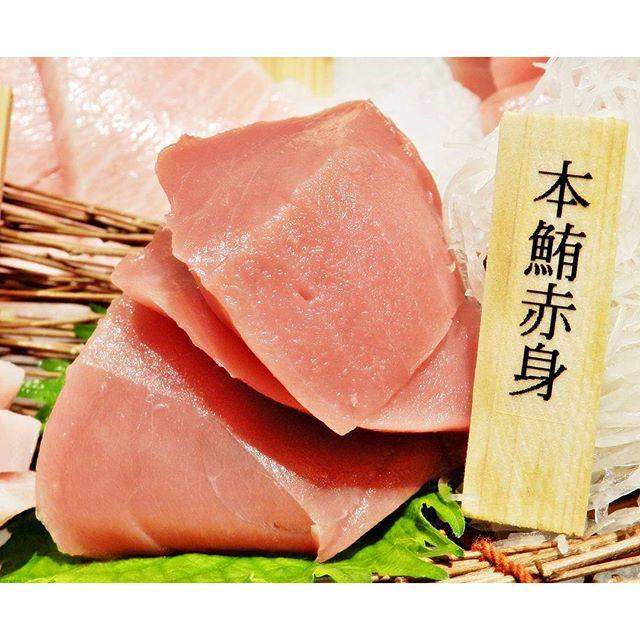 Hon Maguro Akami / Bluefin Tuna Top Loin Sashimi @ Maguro-Donya.
