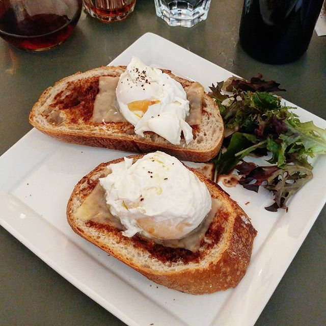Poached eggs on toast ($7.90++), with marmite and edam cheese.