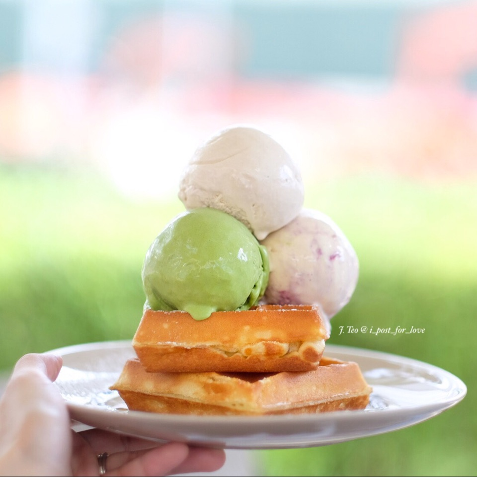 Waffles with Ice Cream [$8.50 + $2.50 for extra scoop + $0.80 for premium flavour].